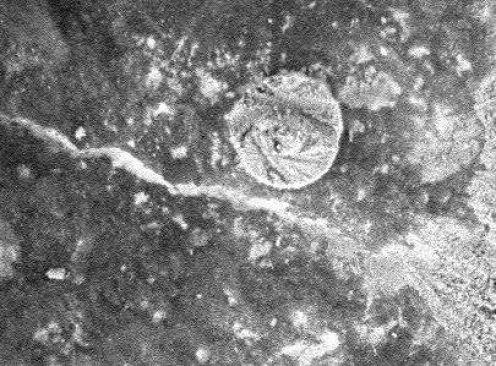 2078784_f496 Марсоход Spirit обнаружил на Красной планете монету