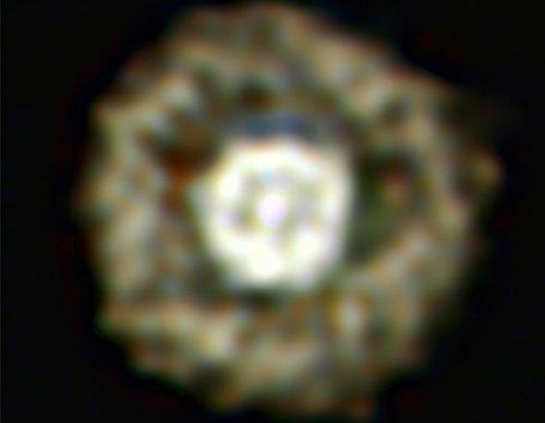 Egg Сфотографирована звезда очень редкого класса